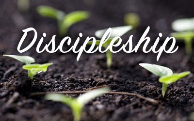 Discipleship Courses at Liberty