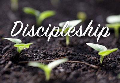 Discipleship Courses at Liberty